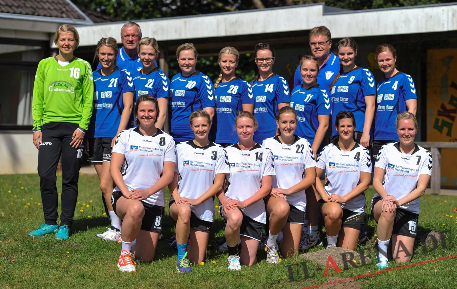 handball schleswig holstein liga